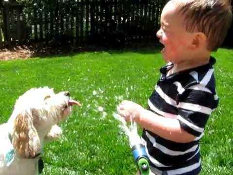 Cute - Dog Teachers Kid How To Drink Water