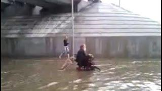 Awesome Dog Helps The Man On Wheelchair