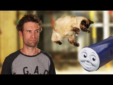 Jokes - How To Get Rid Of Stray Cats