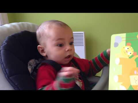 3 Months Old Baby's Funny Reaction To Lion Roaring