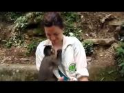 Smart Monkey Uses Woman To Crack Open The Food