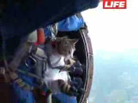 Crazy - Skydiving With A Cat