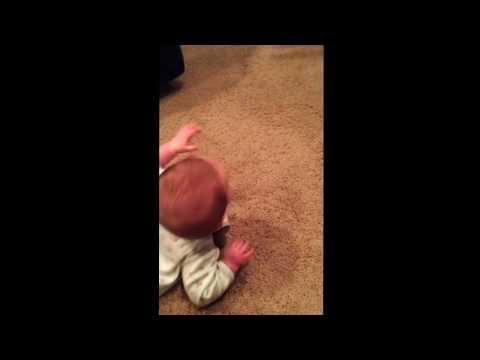 Baby Boy Shows How To Scare The Cat Away
