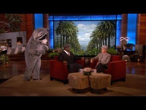 Ellen - Raccoon Scares Cedric The Entertainer