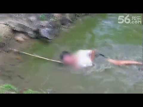 Perfect Example Of Why You Shouldn't Catch An Electric Eel - Fail