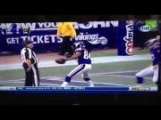 Cordarrelle Patterson Jumps In The Crowd After A Touchdown