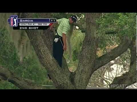 Jokes - Sergio Garcia's Golf Shot From Top Of The Tree