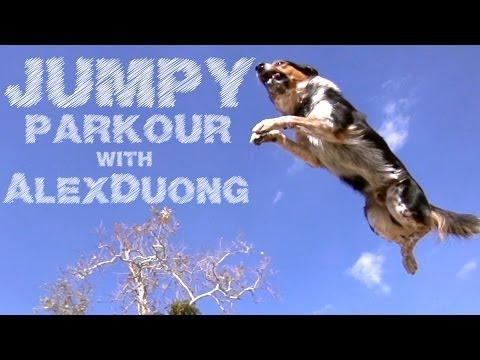 Alex And Jumpy Show Off Parkour Skills