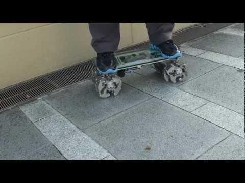 Awesome - 24 Legged Robotic Skateboard