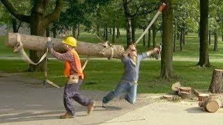 Strong Worker Catches Huge Log Prank
